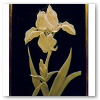 Deep Etched Iris Sold